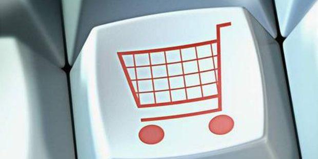 Češi by uvítali více e-shopů zaměřených na potraviny a hobby
