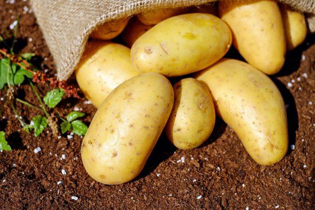 Výrobky s označením Klasa a Regionální potravina jsou bez závad, zjistila potravinářská inspekce