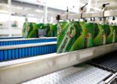 Pivovary loni vyrobily rekordní objem piva, průměrný Čech vypil 143 litrů