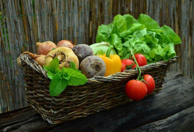 Tuzemské biopotraviny rostly o sedmnáct procent, Čech za ně zaplatí 213 korun ročně