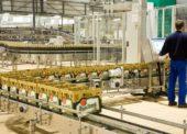 Plzeňský Prazdroj prodal loni téměř sedm milionů hektolitrů piva. Dařilo sa hlavně ležáku Pilsner Urquell