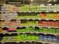 Zboží&Prodej 6–7/2018: Dámská hygiena. Spotřebitelky jsou věrné své značce
