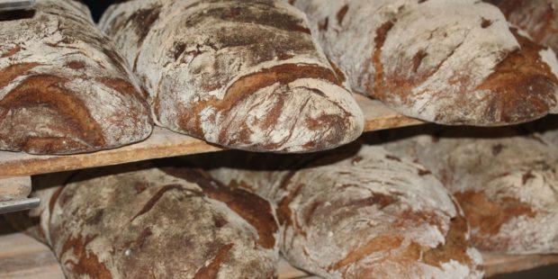 Český chléb je pátý nejlevnější vEvropské unii
