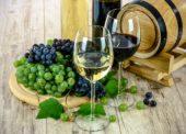 Svatomartinská vína můžete objednat již nyní ve-vinotéce Globus