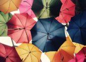 Miloš Toman: Nezlevňujte deštníky za deště a zmrzlinu v létě